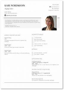 CV eksempel