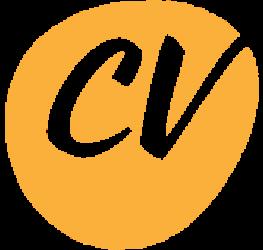 CV – blogg